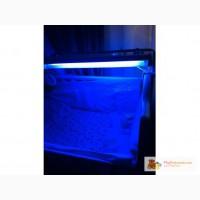 Лампа для лечения желтухи у детей