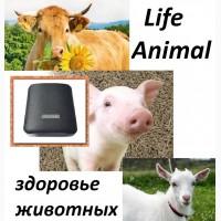 Велнес-устроство Life Animal от Бизнес Процесс Технолоджи. 63 базовые программы