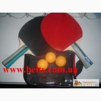 Теннис Ping pang Table (пинг-понг) небольшой