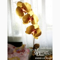 Ростова гігантська орхідея на ніжці стійці золота