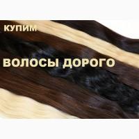 Скупка волос Харьков. Купим волосы дорого