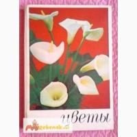 Цветы. Комнатные растения и декоративные кустарники. Книга-альбом. Лот 2
